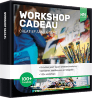 NR1 Workshop Cadeau